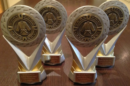 ANNUAL AWARDS & END OF YEAR PARTY FRIDAY 21st DEC 2018